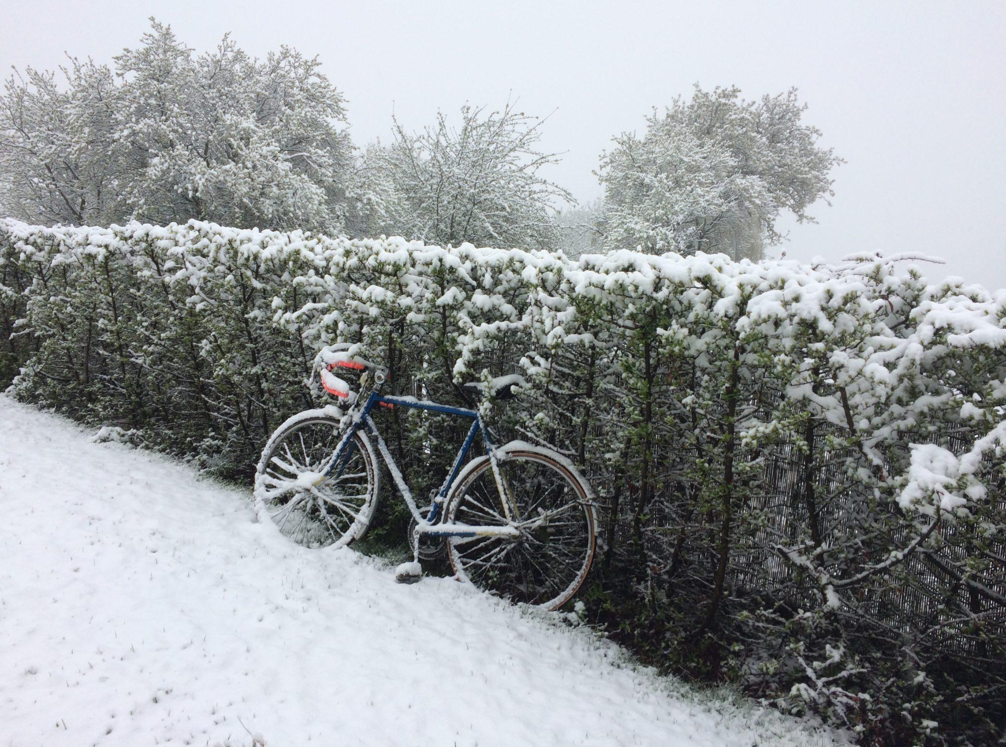 Nasavrky Bikers